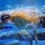 3人のトップ選手クロールの泳ぎ方を参考にしよう