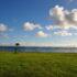 南の島、宮古島で景色が最高のマラソン大会がありますよ